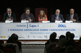 "I Jornadas Andaluzas sobre Cardioprotección (14) • <a style=""font-size:0.8em;"" href=""http://www.flickr.com/photos/129072575@N05/24892223725/"" target=""_blank"">View on Flickr</a>"