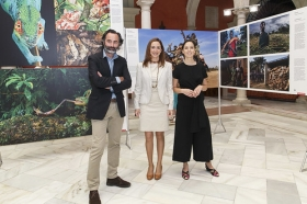 "Exposición 'World Press Photo 2016' en la Fundación Cajasol (Sevilla) (12) • <a style=""font-size:0.8em;"" href=""http://www.flickr.com/photos/129072575@N05/26606290921/"" target=""_blank"">View on Flickr</a>"