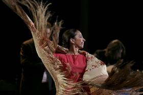 "Jueves Flamencos de la Fundación Cajasol: Isabel Bayón (39) • <a style=""font-size:0.8em;"" href=""http://www.flickr.com/photos/129072575@N05/34611954625/"" target=""_blank"">View on Flickr</a>"