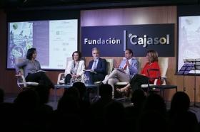 """Inauguración del Festival de Cortos y Salud Mental 2017 en la Fundación Cajasol (7) • <a style=""""font-size:0.8em;"""" href=""""http://www.flickr.com/photos/129072575@N05/34027806873/"""" target=""""_blank"""">View on Flickr</a>"""