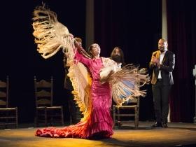 "Jueves Flamencos de la Fundación Cajasol: Isabel Bayón (5) • <a style=""font-size:0.8em;"" href=""http://www.flickr.com/photos/129072575@N05/34611956995/"" target=""_blank"">View on Flickr</a>"