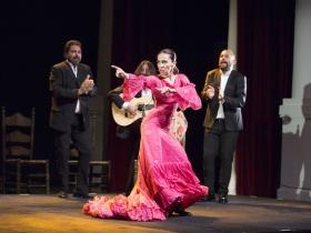 "Jueves Flamencos de la Fundación Cajasol: Isabel Bayón (3) • <a style=""font-size:0.8em;"" href=""http://www.flickr.com/photos/129072575@N05/34611956665/"" target=""_blank"">View on Flickr</a>"