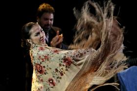 "Jueves Flamencos de la Fundación Cajasol: Isabel Bayón (42) • <a style=""font-size:0.8em;"" href=""http://www.flickr.com/photos/129072575@N05/34450248412/"" target=""_blank"">View on Flickr</a>"