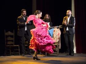"Jueves Flamencos de la Fundación Cajasol: Isabel Bayón (4) • <a style=""font-size:0.8em;"" href=""http://www.flickr.com/photos/129072575@N05/34611956835/"" target=""_blank"">View on Flickr</a>"