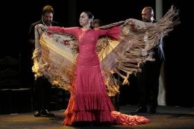 "Jueves Flamencos de la Fundación Cajasol: Isabel Bayón (44) • <a style=""font-size:0.8em;"" href=""http://www.flickr.com/photos/129072575@N05/34611955535/"" target=""_blank"">View on Flickr</a>"