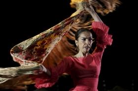 "Jueves Flamencos de la Fundación Cajasol: Isabel Bayón (38) • <a style=""font-size:0.8em;"" href=""http://www.flickr.com/photos/129072575@N05/34450247652/"" target=""_blank"">View on Flickr</a>"