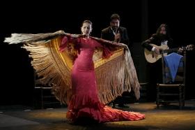 "Jueves Flamencos de la Fundación Cajasol: Isabel Bayón (43) • <a style=""font-size:0.8em;"" href=""http://www.flickr.com/photos/129072575@N05/34611955425/"" target=""_blank"">View on Flickr</a>"