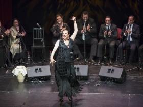 "Jueves Flamencos 2017: Zambomba flamenca 'La Plazuela de Jerez' (10) • <a style=""font-size:0.8em;"" href=""http://www.flickr.com/photos/129072575@N05/25308805578/"" target=""_blank"">View on Flickr</a>"