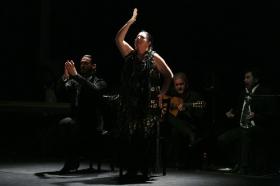"""Jueves Flamencos de la Fundación Cajasol en Sevilla: Amador Rojas y Carmen Ledesma (21) • <a style=""""font-size:0.8em;"""" href=""""http://www.flickr.com/photos/129072575@N05/26093710967/"""" target=""""_blank"""">View on Flickr</a>"""