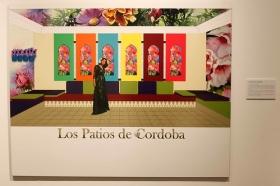 """Proyectos de la exposición 'El arte y los patios cordobeses' en la Fundación Cajasol (32) • <a style=""""font-size:0.8em;"""" href=""""http://www.flickr.com/photos/129072575@N05/26847124271/"""" target=""""_blank"""">View on Flickr</a>"""
