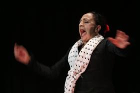 """Actuación de Carmen Cortés en los Jueves Flamencos de la Fundación Cajasol (5) • <a style=""""font-size:0.8em;"""" href=""""http://www.flickr.com/photos/129072575@N05/16003619085/"""" target=""""_blank"""">View on Flickr</a>"""