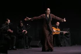 """Actuación de Carmen Cortés en los Jueves Flamencos de la Fundación Cajasol (18) • <a style=""""font-size:0.8em;"""" href=""""http://www.flickr.com/photos/129072575@N05/15977848706/"""" target=""""_blank"""">View on Flickr</a>"""