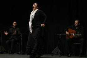 """Actuación de Carmen Cortés en los Jueves Flamencos de la Fundación Cajasol (6) • <a style=""""font-size:0.8em;"""" href=""""http://www.flickr.com/photos/129072575@N05/15817882337/"""" target=""""_blank"""">View on Flickr</a>"""
