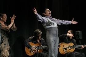 """Jueves Flamencos de la Fundación Cajasol: Toni El Pelao y la Uchi (14) • <a style=""""font-size:0.8em;"""" href=""""http://www.flickr.com/photos/129072575@N05/16544999030/"""" target=""""_blank"""">View on Flickr</a>"""