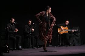 """Actuación de Carmen Cortés en los Jueves Flamencos de la Fundación Cajasol (17) • <a style=""""font-size:0.8em;"""" href=""""http://www.flickr.com/photos/129072575@N05/15977848566/"""" target=""""_blank"""">View on Flickr</a>"""