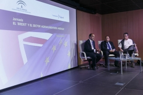 "Jornada 'El 'Brexit' y el sector agroalimentario andaluz' (15) • <a style=""font-size:0.8em;"" href=""http://www.flickr.com/photos/129072575@N05/27927499653/"" target=""_blank"">View on Flickr</a>"