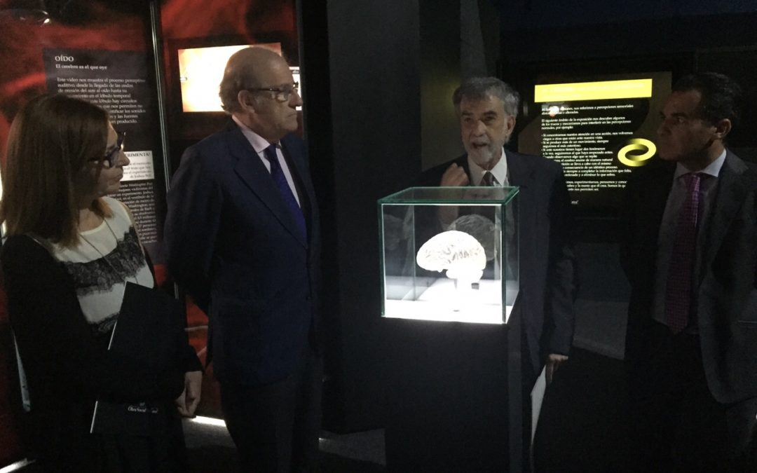Exposición 'Ilusionismo, ¿magia o ciencia?', en la Plaza Doce de Octubre de Huelva hasta el 10 de junio
