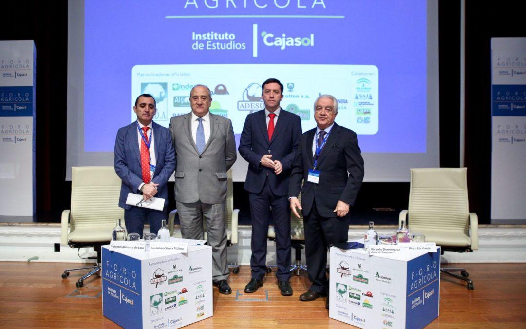 Más de 300 representantes del sector algodonero andaluz analizan sus problemas en el Foro Agrícola desde la Fundación Cajasol