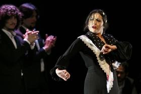 """Jueves Flamencos de la Fundación Cajasol en Sevilla: Antonio Molina 'El Choro' (34) • <a style=""""font-size:0.8em;"""" href=""""http://www.flickr.com/photos/129072575@N05/41429314221/"""" target=""""_blank"""">View on Flickr</a>"""