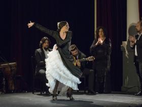 "Jueves Flamencos de la Fundación Cajasol en Sevilla: Lucía Álvarez 'La Piñona' (8) • <a style=""font-size:0.8em;"" href=""http://www.flickr.com/photos/129072575@N05/43084404431/"" target=""_blank"">View on Flickr</a>"