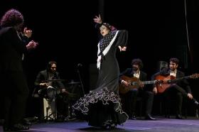 """Jueves Flamencos de la Fundación Cajasol en Sevilla: Antonio Molina 'El Choro' (32) • <a style=""""font-size:0.8em;"""" href=""""http://www.flickr.com/photos/129072575@N05/40534586585/"""" target=""""_blank"""">View on Flickr</a>"""