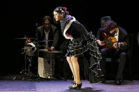 """Jueves Flamencos de la Fundación Cajasol en Sevilla: Antonio Molina 'El Choro' (35) • <a style=""""font-size:0.8em;"""" href=""""http://www.flickr.com/photos/129072575@N05/41429314671/"""" target=""""_blank"""">View on Flickr</a>"""