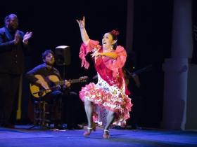 "Jueves Flamencos de la Fundación Cajasol en Sevilla: Manuela Carpio (5) • <a style=""font-size:0.8em;"" href=""http://www.flickr.com/photos/129072575@N05/41289939235/"" target=""_blank"">View on Flickr</a>"