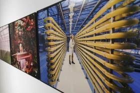 "Exposición 'World Press Photo 2018' en la Fundación Cajasol (Sevilla) (9) • <a style=""font-size:0.8em;"" href=""http://www.flickr.com/photos/129072575@N05/41696752712/"" target=""_blank"">View on Flickr</a>"