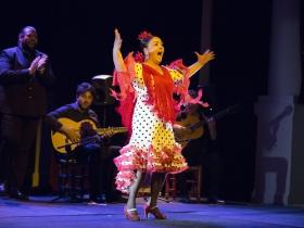 "Jueves Flamencos de la Fundación Cajasol en Sevilla: Manuela Carpio (6) • <a style=""font-size:0.8em;"" href=""http://www.flickr.com/photos/129072575@N05/41289939375/"" target=""_blank"">View on Flickr</a>"