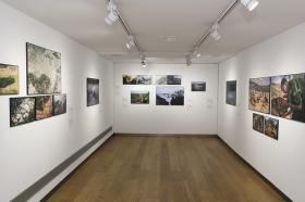"Exposición 'World Press Photo 2018' en la Fundación Cajasol (Sevilla) (13) • <a style=""font-size:0.8em;"" href=""http://www.flickr.com/photos/129072575@N05/39929785450/"" target=""_blank"">View on Flickr</a>"
