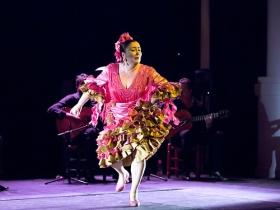 "Jueves Flamencos de la Fundación Cajasol en Sevilla: Manuela Carpio (17) • <a style=""font-size:0.8em;"" href=""http://www.flickr.com/photos/129072575@N05/27319120297/"" target=""_blank"">View on Flickr</a>"