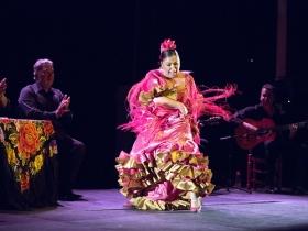 "Jueves Flamencos de la Fundación Cajasol en Sevilla: Manuela Carpio (18) • <a style=""font-size:0.8em;"" href=""http://www.flickr.com/photos/129072575@N05/41289941415/"" target=""_blank"">View on Flickr</a>"