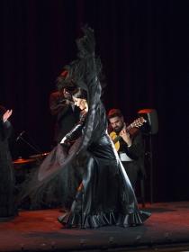 "Jueves Flamencos de la Fundación Cajasol en Sevilla: Lucía Álvarez 'La Piñona' (11) • <a style=""font-size:0.8em;"" href=""http://www.flickr.com/photos/129072575@N05/41273047530/"" target=""_blank"">View on Flickr</a>"