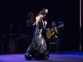 "Jueves Flamencos de la Fundación Cajasol en Sevilla: Lucía Álvarez 'La Piñona' (15) • <a style=""font-size:0.8em;"" href=""http://www.flickr.com/photos/129072575@N05/43084404771/"" target=""_blank"">View on Flickr</a>"