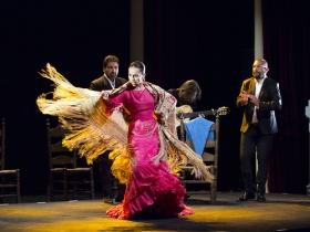 "Jueves Flamencos de la Fundación Cajasol: Isabel Bayón (6) • <a style=""font-size:0.8em;"" href=""http://www.flickr.com/photos/129072575@N05/34611957215/"" target=""_blank"">View on Flickr</a>"