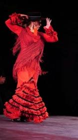 "Estival Flamenco Cádiz 2017: Compañía de Andrés Peña y Pilar Ogalla (8) • <a style=""font-size:0.8em;"" href=""http://www.flickr.com/photos/129072575@N05/36244483171/"" target=""_blank"">View on Flickr</a>"