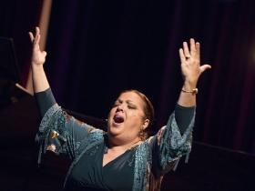 "Jueves Flamencos de la Fundación Cajasol: Angelita Montoya (3) • <a style=""font-size:0.8em;"" href=""http://www.flickr.com/photos/129072575@N05/38249814376/"" target=""_blank"">View on Flickr</a>"