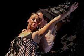 "Jueves Flamencos: Asunción Pérez 'Choni' & David Pérez en 'De2' (20) • <a style=""font-size:0.8em;"" href=""http://www.flickr.com/photos/129072575@N05/39067477201/"" target=""_blank"">View on Flickr</a>"