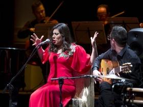 """Jueves Flamencos de la Fundación Cajasol en Sevilla: María José Pérez (3) • <a style=""""font-size:0.8em;"""" href=""""http://www.flickr.com/photos/129072575@N05/40391331172/"""" target=""""_blank"""">View on Flickr</a>"""