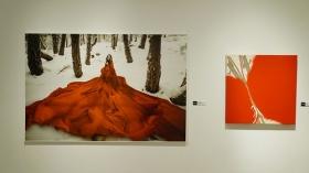 """Exposición 'La colección del sur' en la Fundación Cajasol (Cádiz) (12) • <a style=""""font-size:0.8em;"""" href=""""http://www.flickr.com/photos/129072575@N05/40706999101/"""" target=""""_blank"""">View on Flickr</a>"""