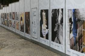 "V Muestra de fotografías vineladas en la Carrera Oficial de la Semana Santa de Sevilla (6) • <a style=""font-size:0.8em;"" href=""http://www.flickr.com/photos/129072575@N05/40088067195/"" target=""_blank"">View on Flickr</a>"
