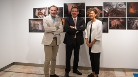 "Exposición World Press Photo 2019 en Sevilla (5) • <a style=""font-size:0.8em;"" href=""http://www.flickr.com/photos/129072575@N05/46780484185/"" target=""_blank"">View on Flickr</a>"