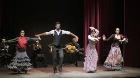"'Jóvenes Flamencos Cajasol' 2019 en Sevilla (5) • <a style=""font-size:0.8em;"" href=""http://www.flickr.com/photos/129072575@N05/48121976616/"" target=""_blank"">View on Flickr</a>"