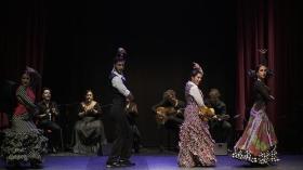 "'Jóvenes Flamencos Cajasol' 2019 en Sevilla (7) • <a style=""font-size:0.8em;"" href=""http://www.flickr.com/photos/129072575@N05/48121976671/"" target=""_blank"">View on Flickr</a>"