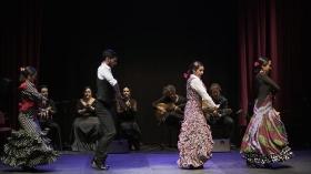 "'Jóvenes Flamencos Cajasol' 2019 en Sevilla (13) • <a style=""font-size:0.8em;"" href=""http://www.flickr.com/photos/129072575@N05/48122012163/"" target=""_blank"">View on Flickr</a>"