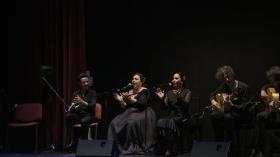 "'Jóvenes Flamencos Cajasol' 2019 en Sevilla (9) • <a style=""font-size:0.8em;"" href=""http://www.flickr.com/photos/129072575@N05/48122073167/"" target=""_blank"">View on Flickr</a>"