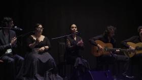 "'Jóvenes Flamencos Cajasol' 2019 en Sevilla (12) • <a style=""font-size:0.8em;"" href=""http://www.flickr.com/photos/129072575@N05/48122073332/"" target=""_blank"">View on Flickr</a>"