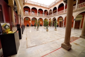 "Exposición 'Plastihistoria de la Música' en Sevilla (6) • <a style=""font-size:0.8em;"" href=""http://www.flickr.com/photos/129072575@N05/48678800937/"" target=""_blank"">View on Flickr</a>"