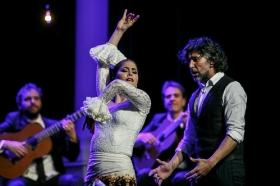 """Jueves Flamencos de la Fundación Cajasol en Sevilla: Arcángel y su espectáculo 'Tablao' (24) • <a style=""""font-size:0.8em;"""" href=""""http://www.flickr.com/photos/129072575@N05/32232642237/"""" target=""""_blank"""">View on Flickr</a>"""