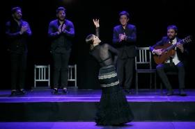 """Jueves Flamencos de la Fundación Cajasol en Sevilla: Arcángel y su espectáculo 'Tablao' (37) • <a style=""""font-size:0.8em;"""" href=""""http://www.flickr.com/photos/129072575@N05/47122449792/"""" target=""""_blank"""">View on Flickr</a>"""